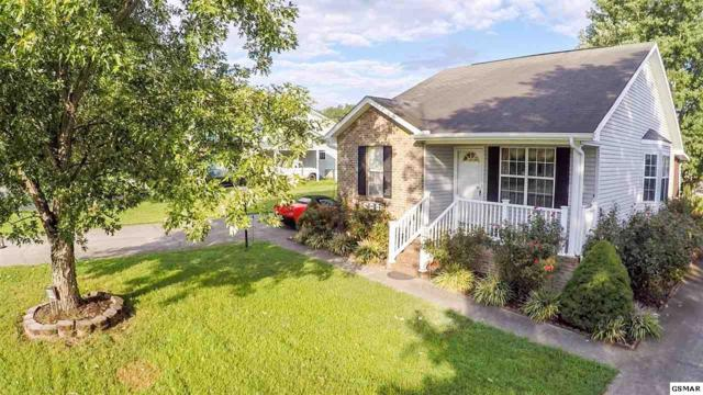 632 S Asbury Drive, Pigeon Forge, TN 37863 (#218519) :: Colonial Real Estate