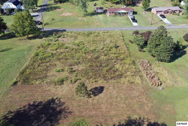 Lots 75 & 80 Sycamore St, Bean Station, TN 37708 (#218520) :: Four Seasons Realty, Inc