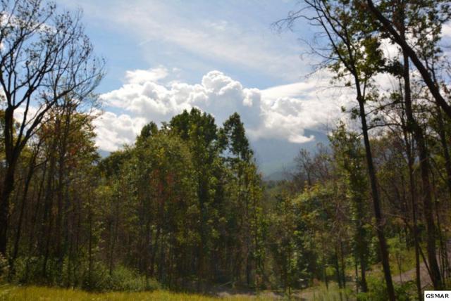 981 Wiley Oakley Drive, Gatlinburg, TN 37738 (#218525) :: Four Seasons Realty, Inc