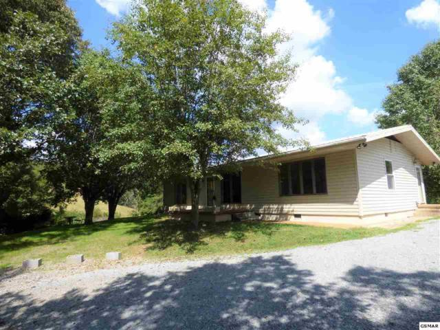 2233 Henderson Springs Rd, Pigeon Forge, TN 37863 (#218530) :: Four Seasons Realty, Inc