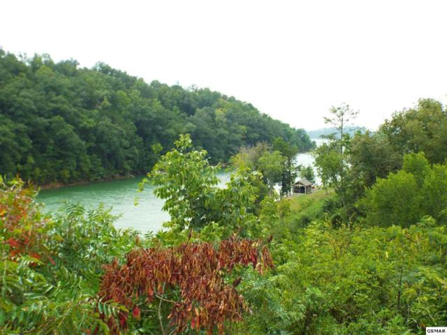 Lot 29 Stone Shore Way, Dandridge, TN 37725 (#218535) :: Jason White Team | Century 21 Legacy