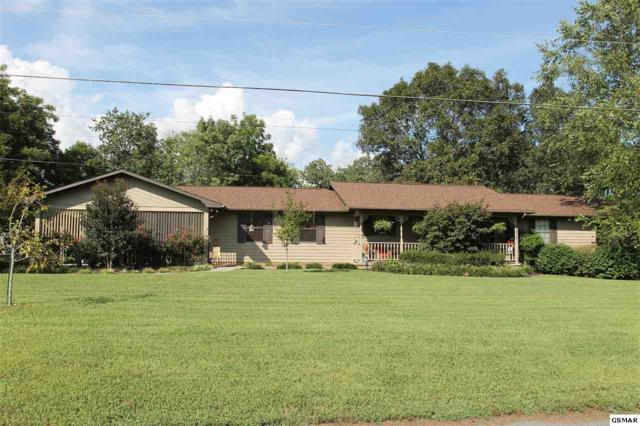1150 Winding Dr, Sevierville, TN 37876 (#218536) :: Billy Houston Group