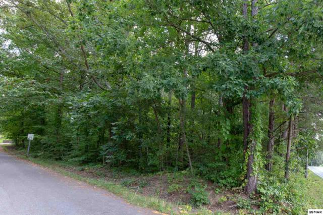 Lot 1 Ernest Mcmahan Road, Sevierville, TN 37862 (#218538) :: Billy Houston Group