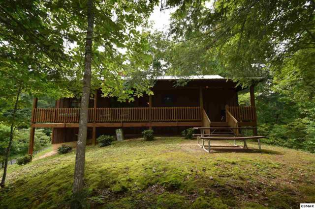 508 Nathans Nook Rd, Townsend, TN 37882 (#218539) :: Billy Houston Group
