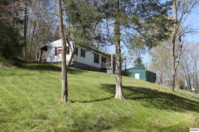 1428 Rocky Flat Rd, Rutledge, TN 37861 (#218548) :: Four Seasons Realty, Inc
