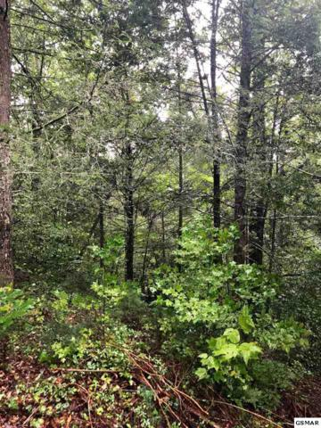 Lot 95 Owls Cove Way, Sevierville, TN 37862 (#218554) :: Billy Houston Group