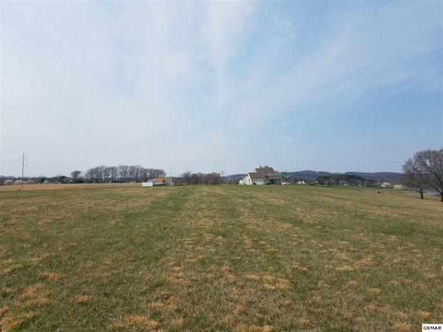 Lot 139 Fair Meadow Dr, Dandridge, TN 37725 (#218556) :: Four Seasons Realty, Inc