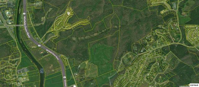 Lot 102 N Smoky Mtn Way, Sevierville, TN 37876 (#218558) :: Billy Houston Group