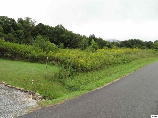 Lot 29 Sugar Tree Drive, Sevierville, TN 37876 (#218563) :: Four Seasons Realty, Inc