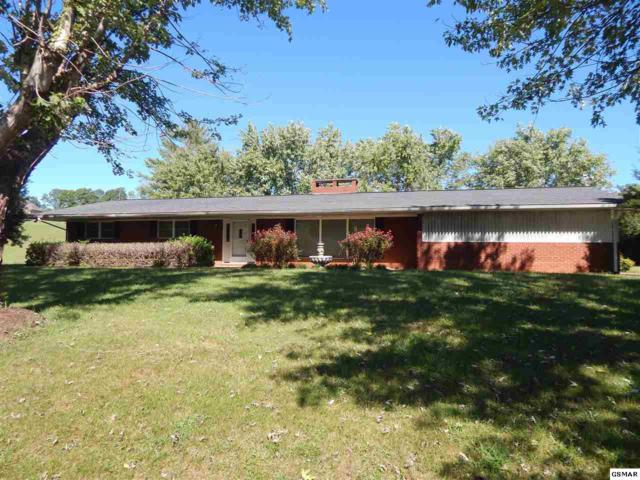 4170 Newport Hwy, Sevierville, TN 37876 (#218566) :: Billy Houston Group