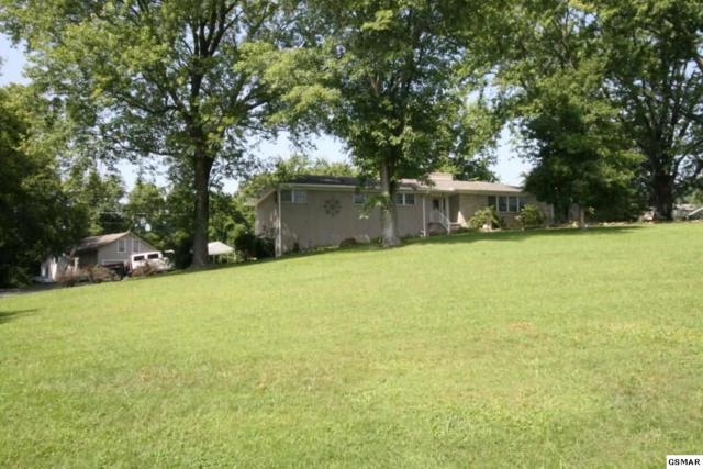 217 Hardin Lane, Sevierville, TN 37862 (#218569) :: Colonial Real Estate