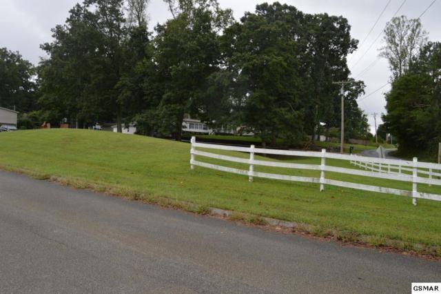 Lot Lot 13 St Johns, Dandridge, TN 37725 (#218576) :: Four Seasons Realty, Inc