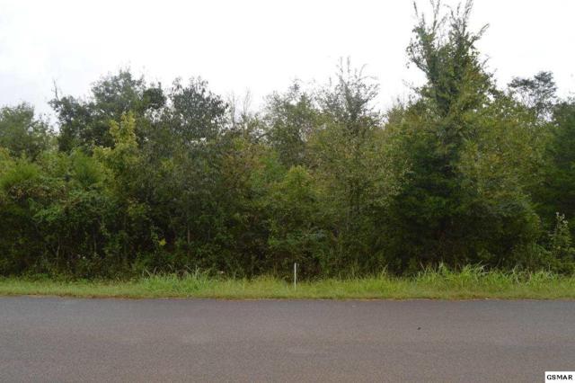 Lot 4 Elder Lane, Kodak, TN 37764 (#218578) :: Four Seasons Realty, Inc