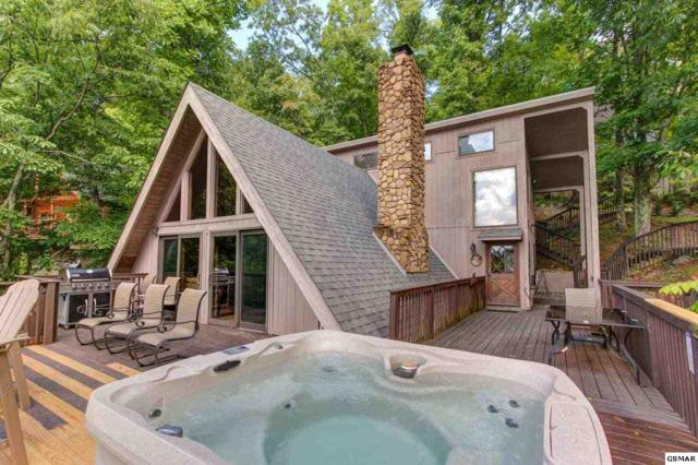 943 Scenic Trail, Gatlinburg, TN 37738 (#218588) :: The Terrell Team