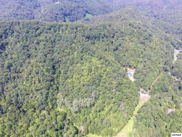 Gum Stand Rd, Sevierville, TN 37862 (#218589) :: Four Seasons Realty, Inc