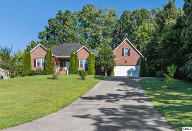 826 Reagan View Lane, Seymour, TN 37865 (#218593) :: Colonial Real Estate