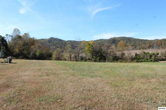 Lot 10 Autumn Woods Ln., Sevierville, TN 37862 (#218594) :: Billy Houston Group