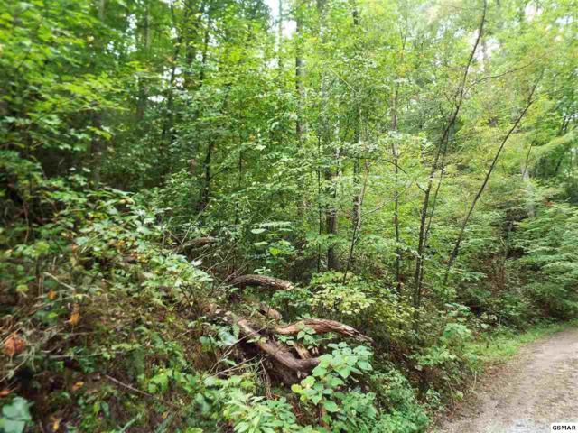 Parcel 053.00 Moosewood Spring Way, Hartford, TN 37753 (#218596) :: Four Seasons Realty, Inc