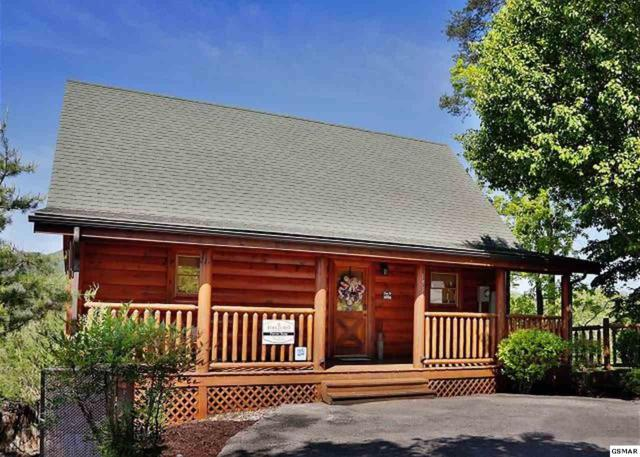 1937 Cougar Crossing Way Forever Young, Sevierville, TN 37876 (#218603) :: The Terrell Team
