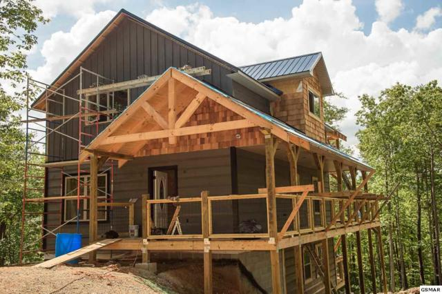 2442 Coopers Hawk Way Lot 63, Sevierville, TN 37862 (#218604) :: Billy Houston Group
