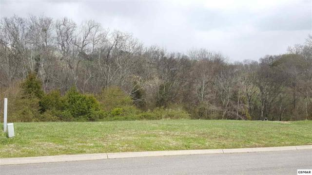 Lot 99 Mississippi Ave, Seymour, TN 37865 (#218634) :: Billy Houston Group