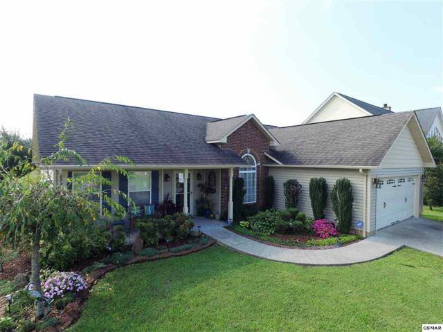 2425 Frost Valley Court, Sevierville, TN 37876 (#218641) :: Prime Mountain Properties