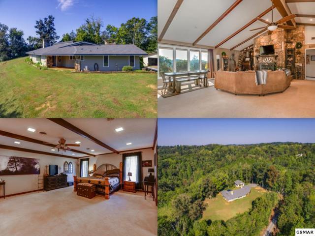13410 Chapman Hwy, Seymour, TN 37865 (#218647) :: SMOKY's Real Estate LLC