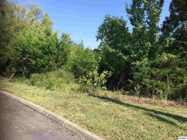 Lot 151 Eagle Feather Dr, Sevierville, TN 37876 (#218651) :: SMOKY's Real Estate LLC