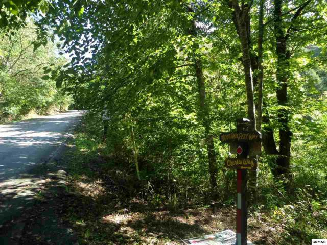 Lot 29 Mountain Rest Way, Sevierville, TN 37876 (#218678) :: Four Seasons Realty, Inc