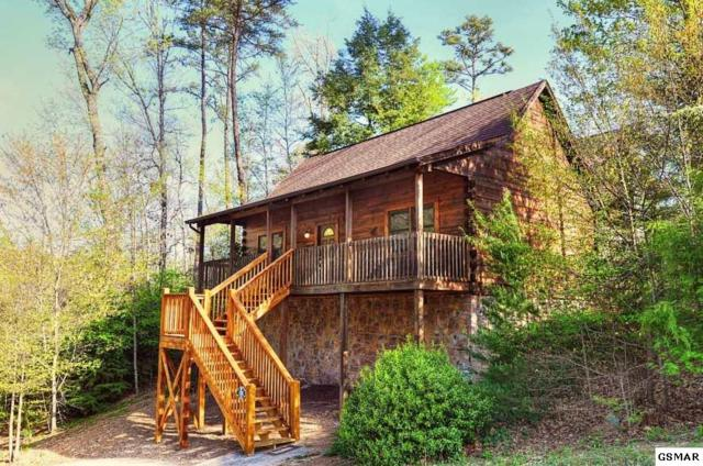 693 Eagles Boulevard Way #95, Pigeon Forge, TN 37863 (#218681) :: Billy Houston Group
