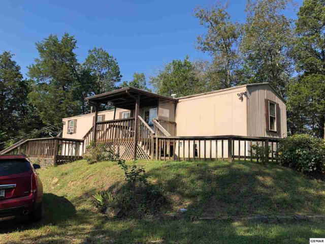 1240 Lords Way, Sevierville, TN 37876 (#218688) :: Four Seasons Realty, Inc