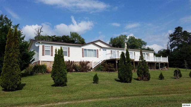 598 Old Stage Rd, Dandridge, TN 37725 (#218689) :: Colonial Real Estate