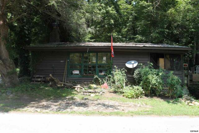 6923 Old Walland Hwy, Townsend, TN 37882 (#218696) :: The Terrell Team
