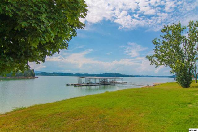 721 Waters Edge, Dandridge, TN 37725 (#218716) :: Billy Houston Group
