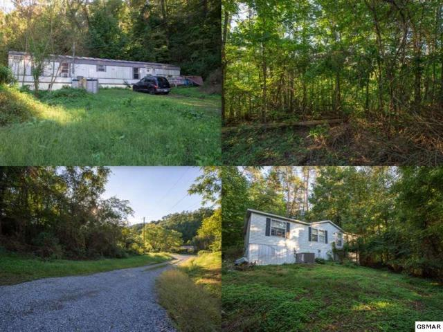 2219 and 2223 Goose Gap Road, Sevierville, TN 37876 (#218726) :: Colonial Real Estate