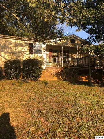 408 Haywood Ave, Knoxville, TN 37920 (#218771) :: Colonial Real Estate