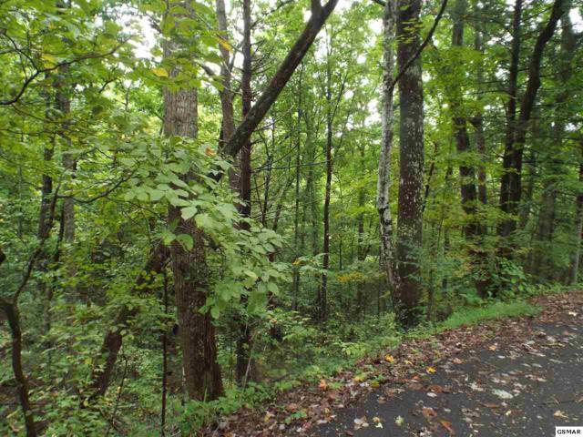 #11 Grassy Branch Loop, Sevierville, TN 37876 (#218780) :: The Terrell Team