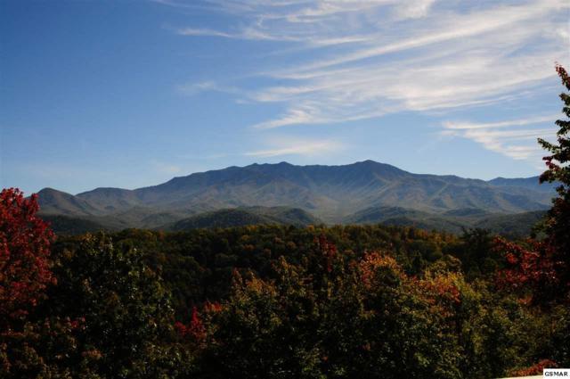 743 Cliff Branch Rd Lot 213, Gatlinburg, TN 37738 (#218818) :: Four Seasons Realty, Inc