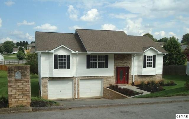 1451 Jasmine Trail, Sevierville, TN 37862 (#218859) :: Colonial Real Estate