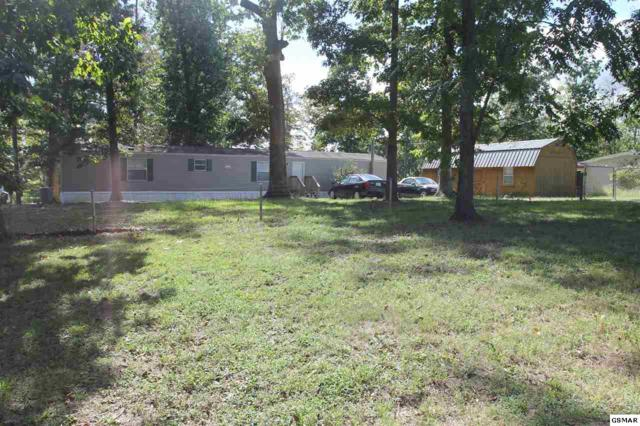 1729 Walnut Hill Ln, Sevierville, TN 37876 (#218864) :: Colonial Real Estate