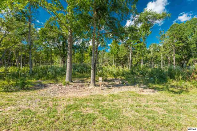 Lot 44 Lakeview Court, Dandridge, TN 37725 (#218890) :: Colonial Real Estate