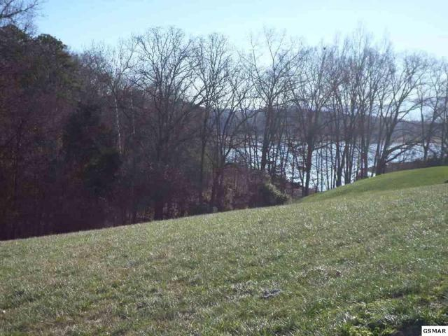 Lot 53 Majestic Circle, Dandridge, TN 37725 (#218893) :: Four Seasons Realty, Inc