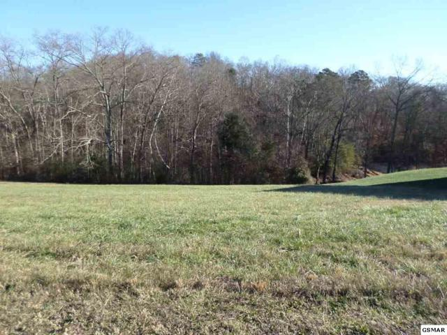 Lot 52 Majestic Circle, Dandridge, TN 37725 (#218895) :: Four Seasons Realty, Inc