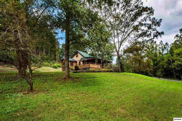 1086 Sencebaugh Drive, Sevierville, TN 37876 (#218897) :: Billy Houston Group