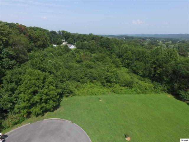 Parcel 219.08 Sentry View Drive, Seymour, TN 37865 (#218933) :: The Terrell Team