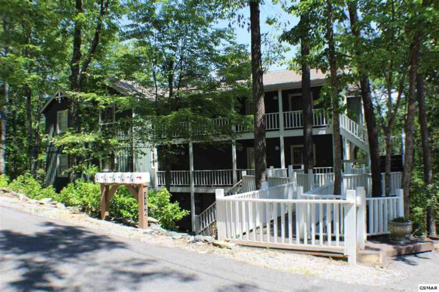 1106 Tanrac Tr, Gatlinburg, TN 37738 (#218943) :: Billy Houston Group