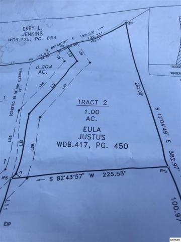 4239 Boogertown Rd Tract 2, Sevierville, TN 37876 (#218947) :: The Terrell Team