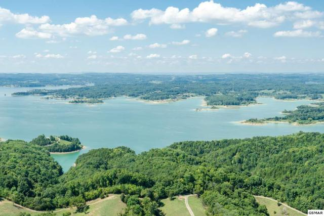 745 Brightstone Way, Sevierville, TN 37876 (#218965) :: Colonial Real Estate