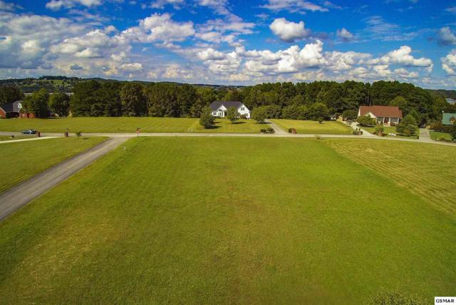 TBD Big Oak Dr, Dandridge, TN 37725 (#218972) :: Four Seasons Realty, Inc