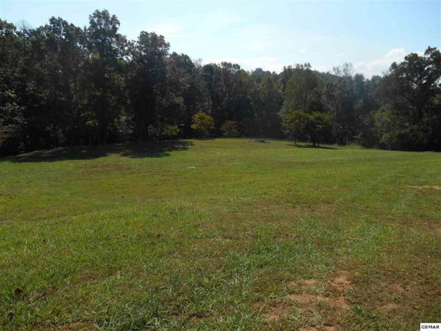 3317 Jeff Lane, Kodak, TN 37764 (#218978) :: Colonial Real Estate